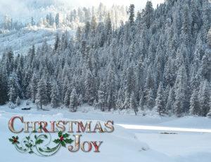 Printex Printing and Graphics holiday greeting card