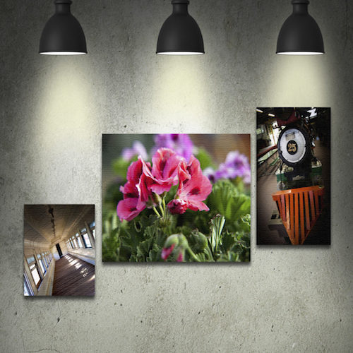 Printex Printing and Graphics mounted canvas prints